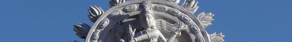 Navamsa header image 2