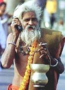 sadhu cell